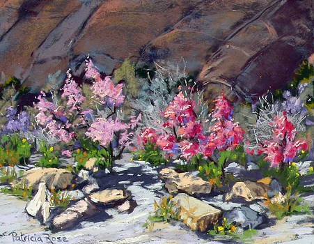 Canyon Redbuds by Patricia Rose Ford