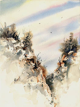 Sam Sidders - Canyon