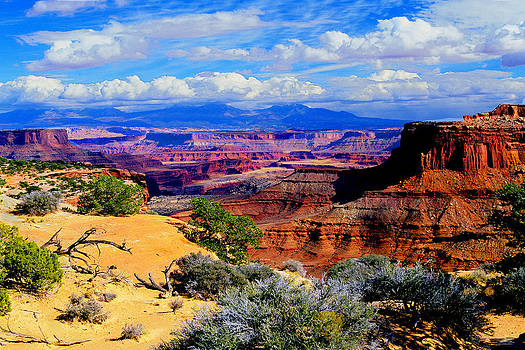 Canyonlands by Frank Houck
