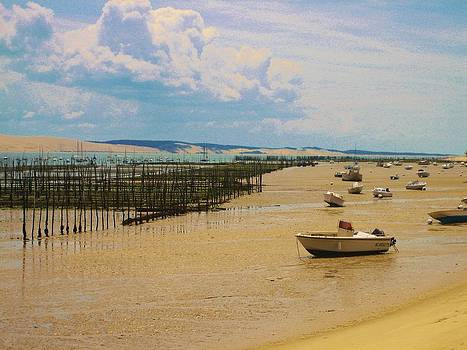 Cap Ferret beach by Dany Lison