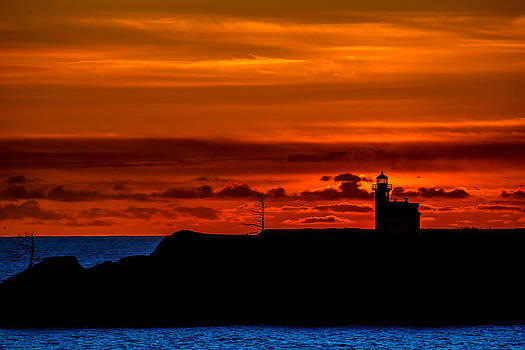 Cape Arago Lighthouse II by Robert Bynum