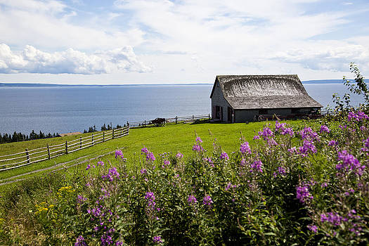 Cape Breton Farm by Allan MacDonald
