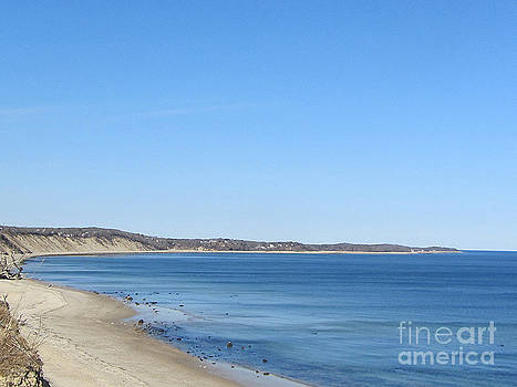 Cape Cod Bay Plymouth by Lisa  Marie Germaine