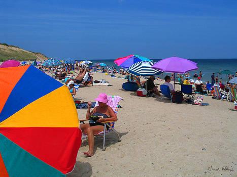 Cape Cod Beach by Thomas Rehkamp