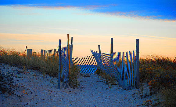 Cape Cod colors by Lorena Mahoney