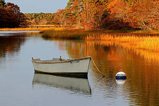 Juergen Roth - Cape Cod Fall Foliage