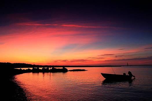 Cape Cod Summer by Matthew Grice