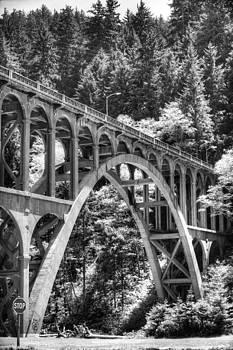 Cape Creek Bridge  by Thomas Chamberlin