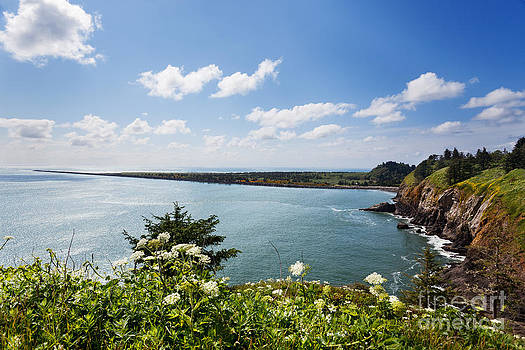 Jo Ann Snover - Cape Disappointment