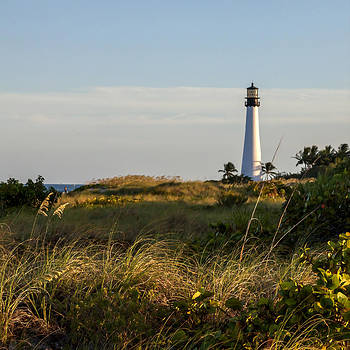 Lynn Palmer - Cape Florida Lighthouse