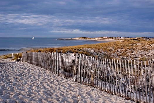 Cape Henlopen - Sailboat by Francie Davis