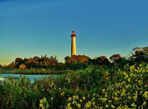 Cape May Lighthouse Above the Flowers by Ed Sweeney