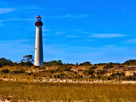 Cape May Lighthouse by Alicia Zimmerman