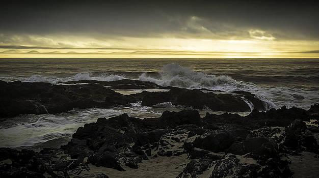 Cape Perpetua by Blanca Braun