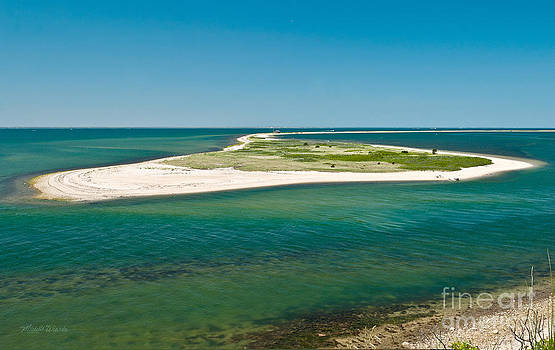 Cape Poge From Chappaquiddick Island Marthas Vineyard Massachusetts by Michelle Constantine