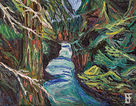 Allen Forrest - Capilano Canyon River 4