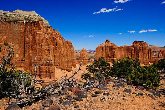 Capital Reef by Don and Bonnie Fink