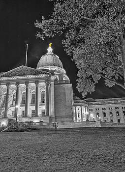 Steven Ralser - Capitol - Madison - Wisconsin