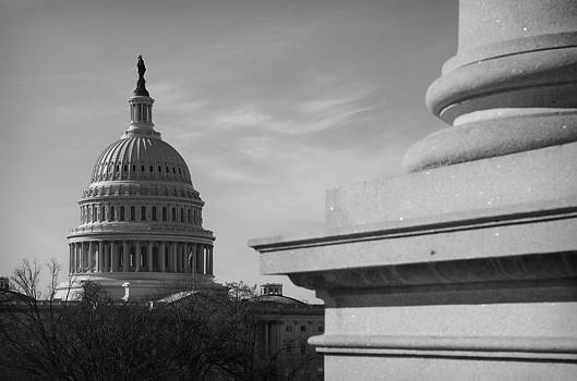 Capitol Dome in Black and White by Michael Donahue
