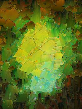 CApixART Abstract 13 by Chris Axford