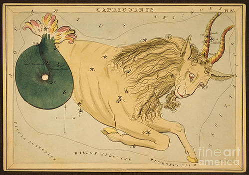 Science Source - Capricornus Constellation Zodiac Sign