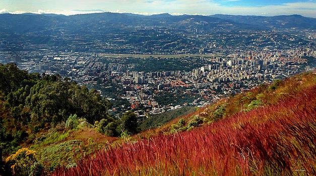 Bibi Rojas - Caracas from above