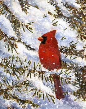 Cardinal in Winter by Robert Stump
