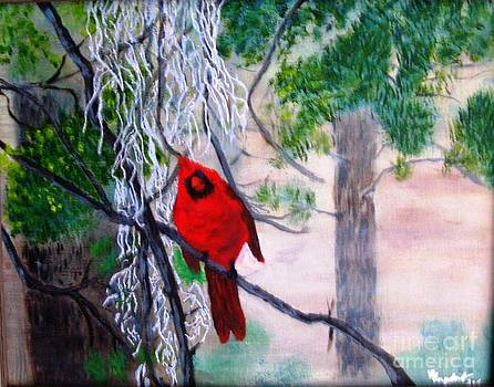 Cardinal on a Misty Morning by Betty and Kathy Engdorf and Bosarge