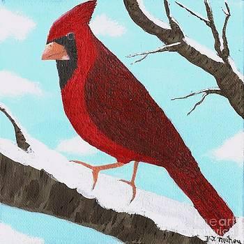 Cardinal by Vicki Maheu