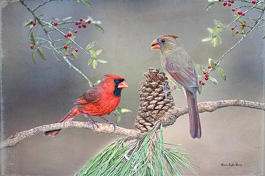 Cardinals in Pine and Holly by Bonnie Barry