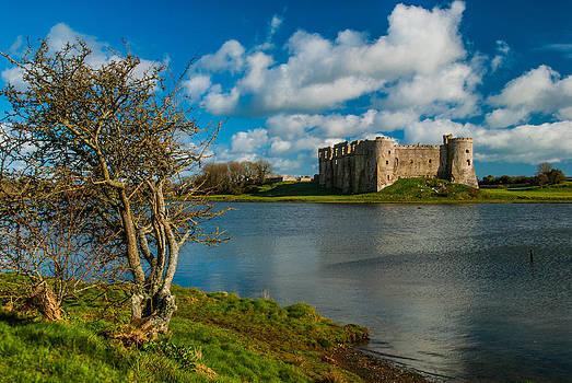 David Ross - Carew Castle