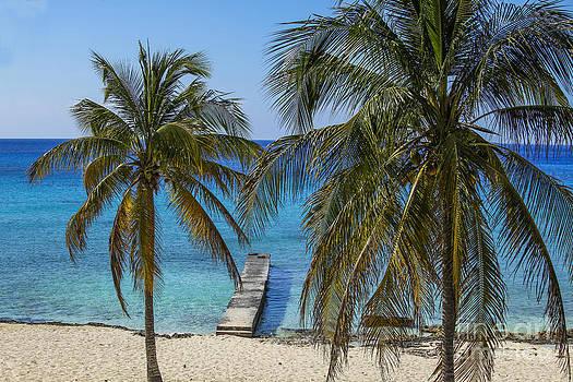 Patricia Hofmeester - Caribbean beach