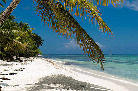 Caribbean white sandy beach by Anastasia E