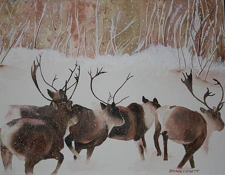 Caribou Run by Brenda Everett