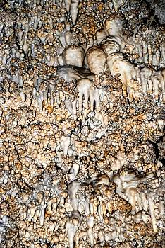 Carlsbad Caverns 11 by T C Brown