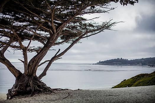 Carmel Beach by SFPhotoStore