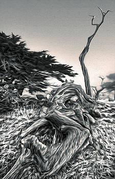 Gregory Dyer - Carmel California - 03