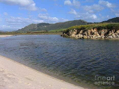 Carmel River Lagoon by James B Toy