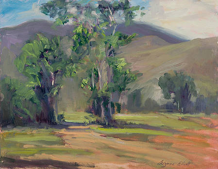 Carmel Valley by Suzanne Elliott