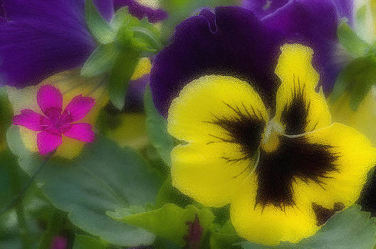 Carnation and pansy by Konstantin Gushcha