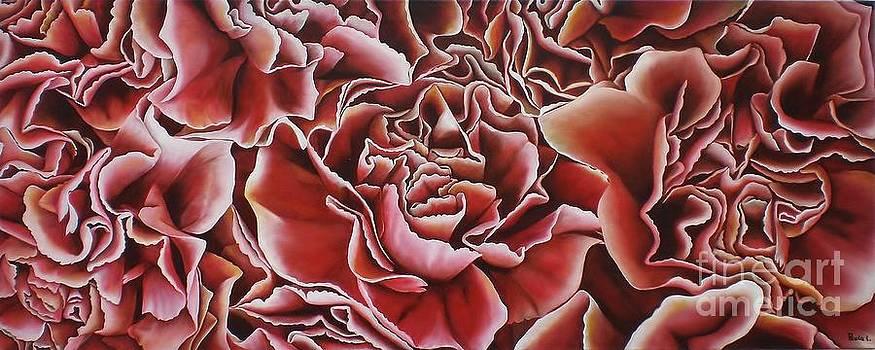 Carnations by Paula Ludovino
