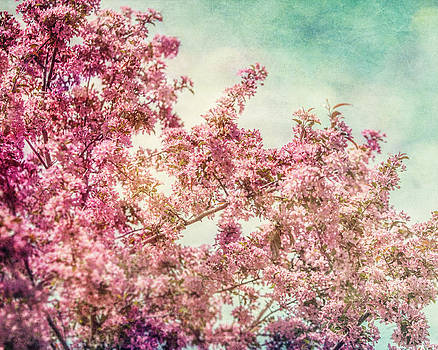 Lisa Russo - Carnival Spring Blossoms