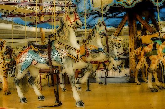 Carousel in Dreamland by Nancy Myer