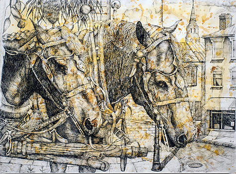 Carriage Horses by Jason Morgan