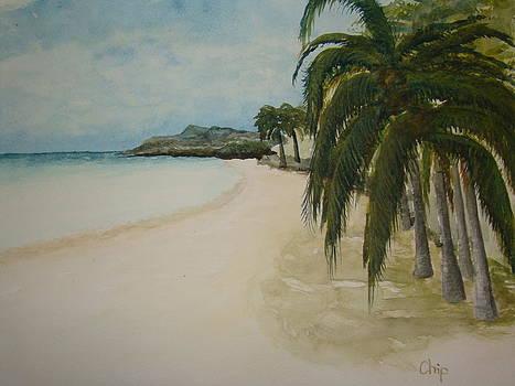 Carribean Beach by Chip Picott