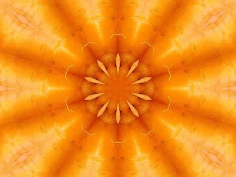 Carrot Sunburst by Annette Allman