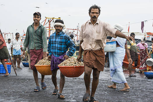 Carrying Prawns by Sonny Marcyan