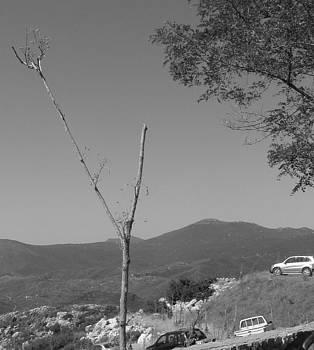 Cars On Cliff by Angela Zafiris