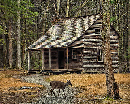 Carter Shields Cabin by TnBackroadsPhotos