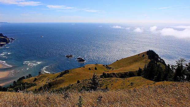 Cascade Head Ocean  by Tim Rice